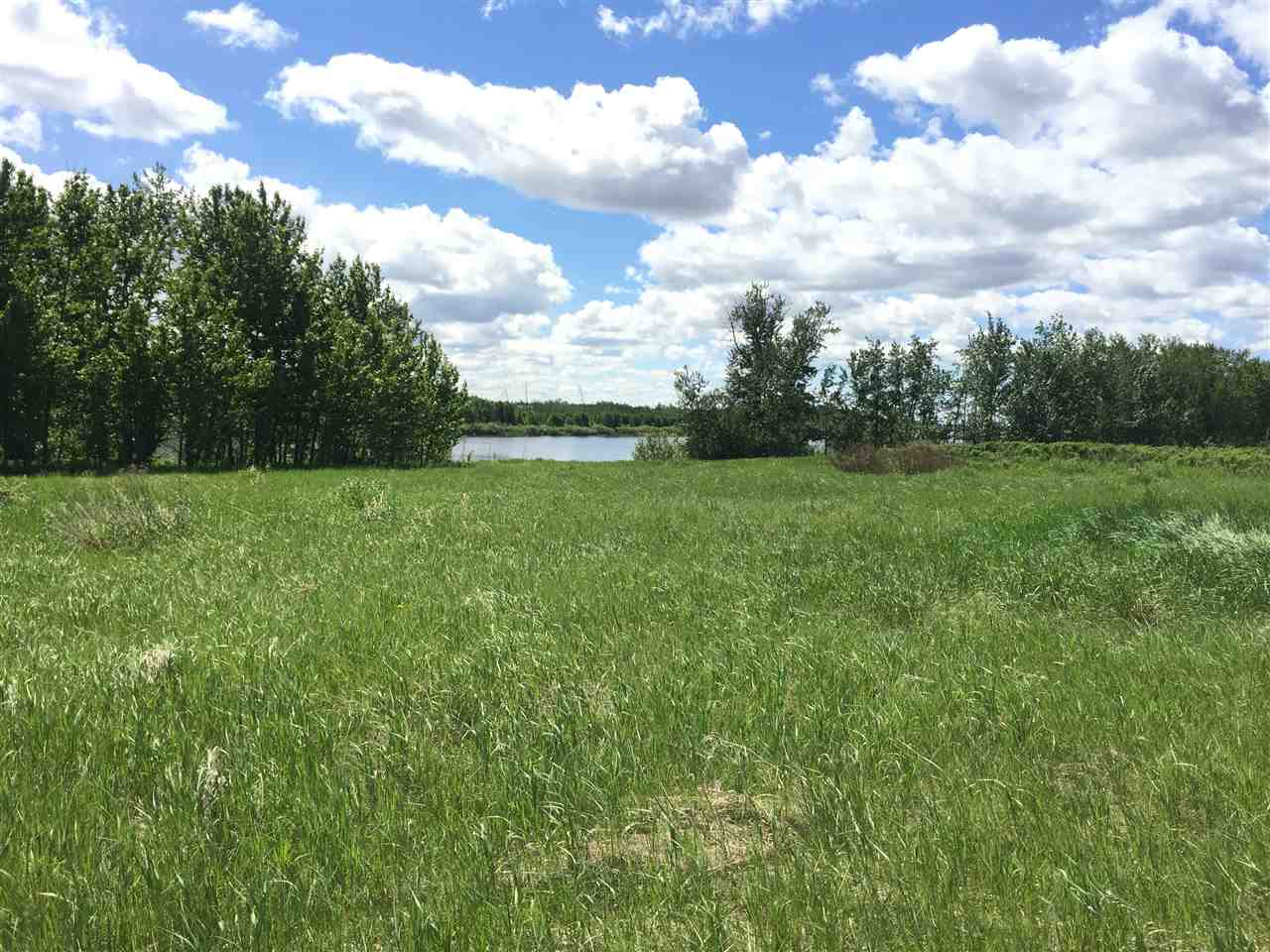 Property for Sale, MLS® # E4101744
