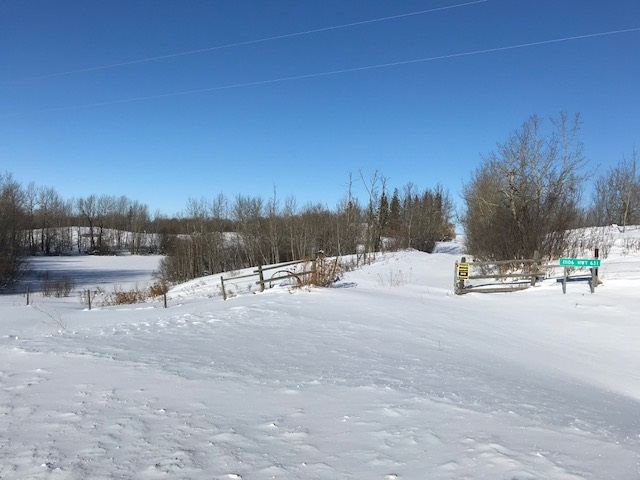 Property for Sale, MLS® # E4145820