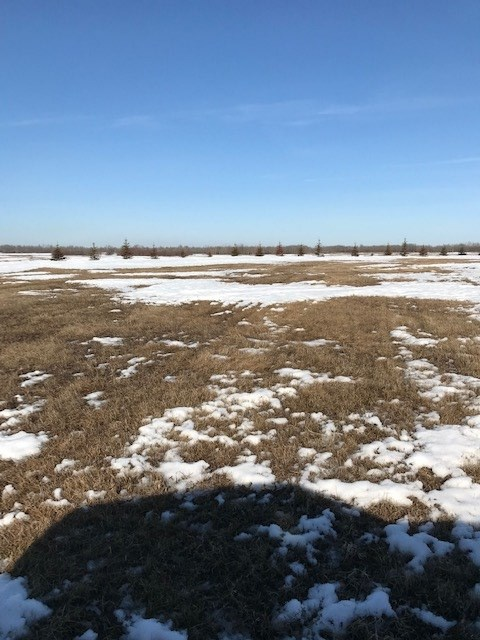 Property for Sale, MLS® # E4149970