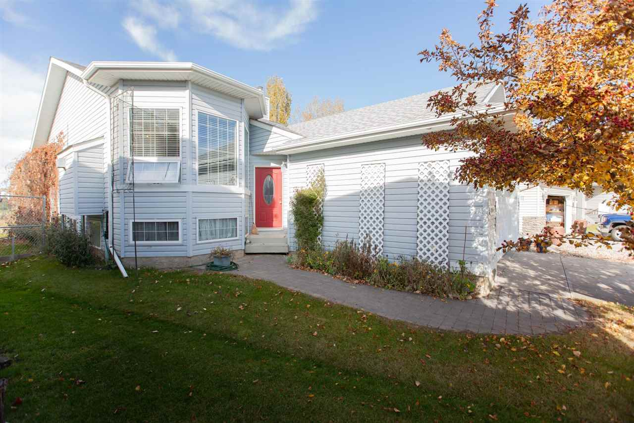 Real Estate Listing MLS E4177504