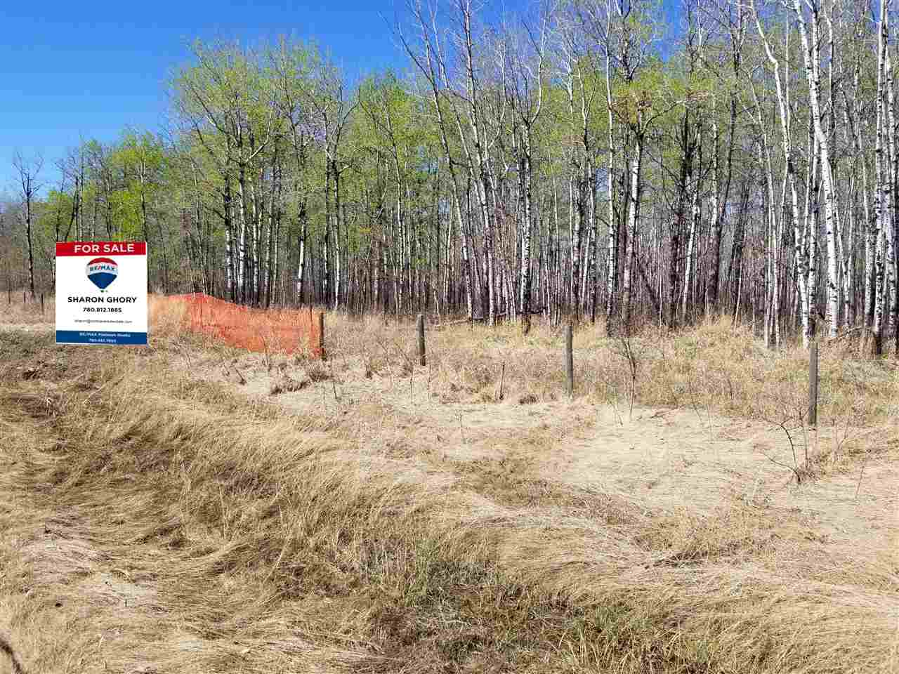 Property for Sale, MLS® # E4183895