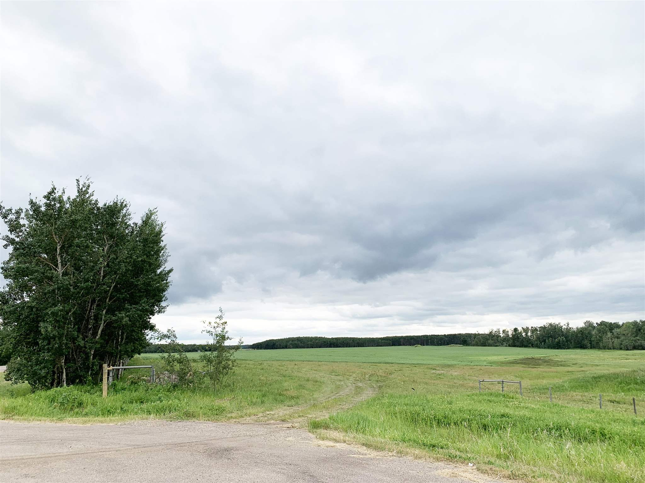 Property for Sale, MLS® # E4184626