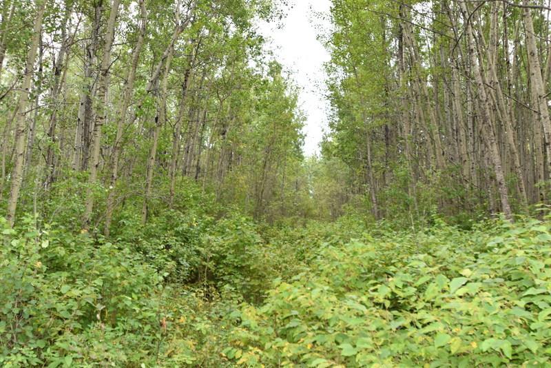 Lot 1, Blk 1, Plan 1522832 Wandering River, at $139,900