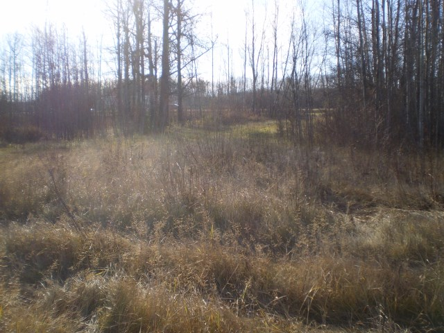 6206 Hwy 16 Highway NW, at $99,900