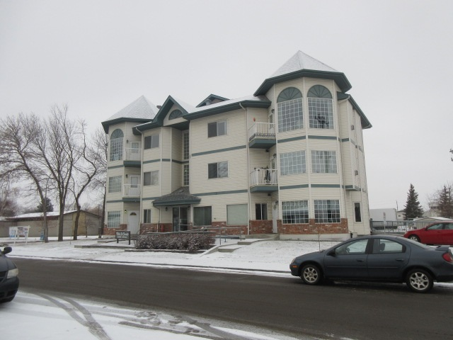 MLS® listing #E4142058 for sale located at 203 11308 130 Avenue