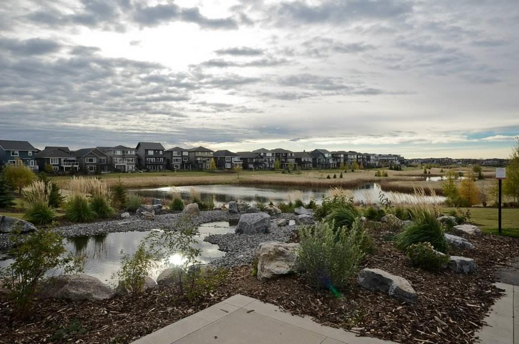 MLS® listing #E4143823 for sale located at 8715 219 Street