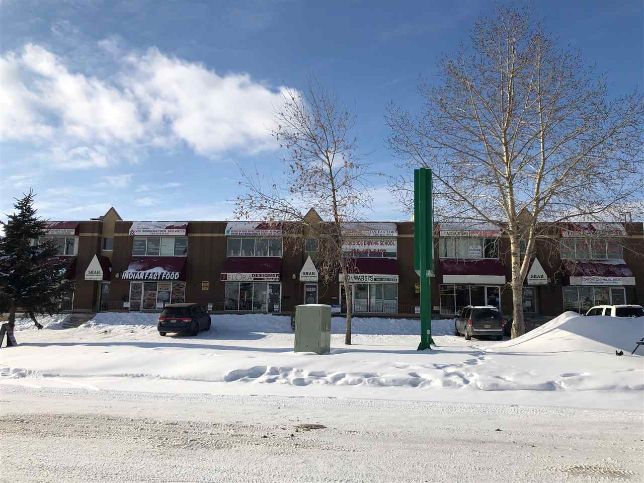 MLS® listing #E4145297 for sale located at 3460 93 Street