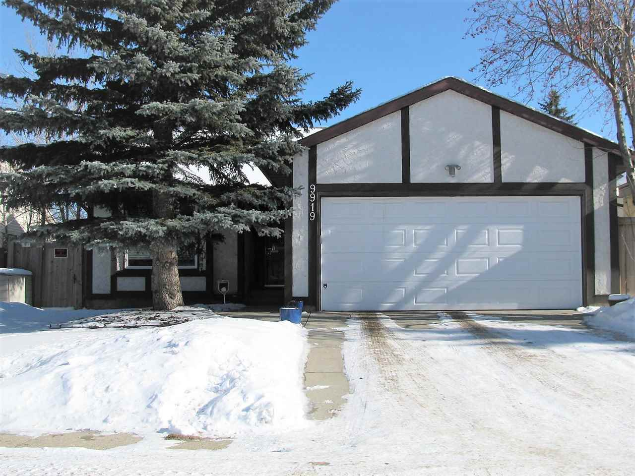 MLS® listing #E4145618 for sale located at 9919 179 Street