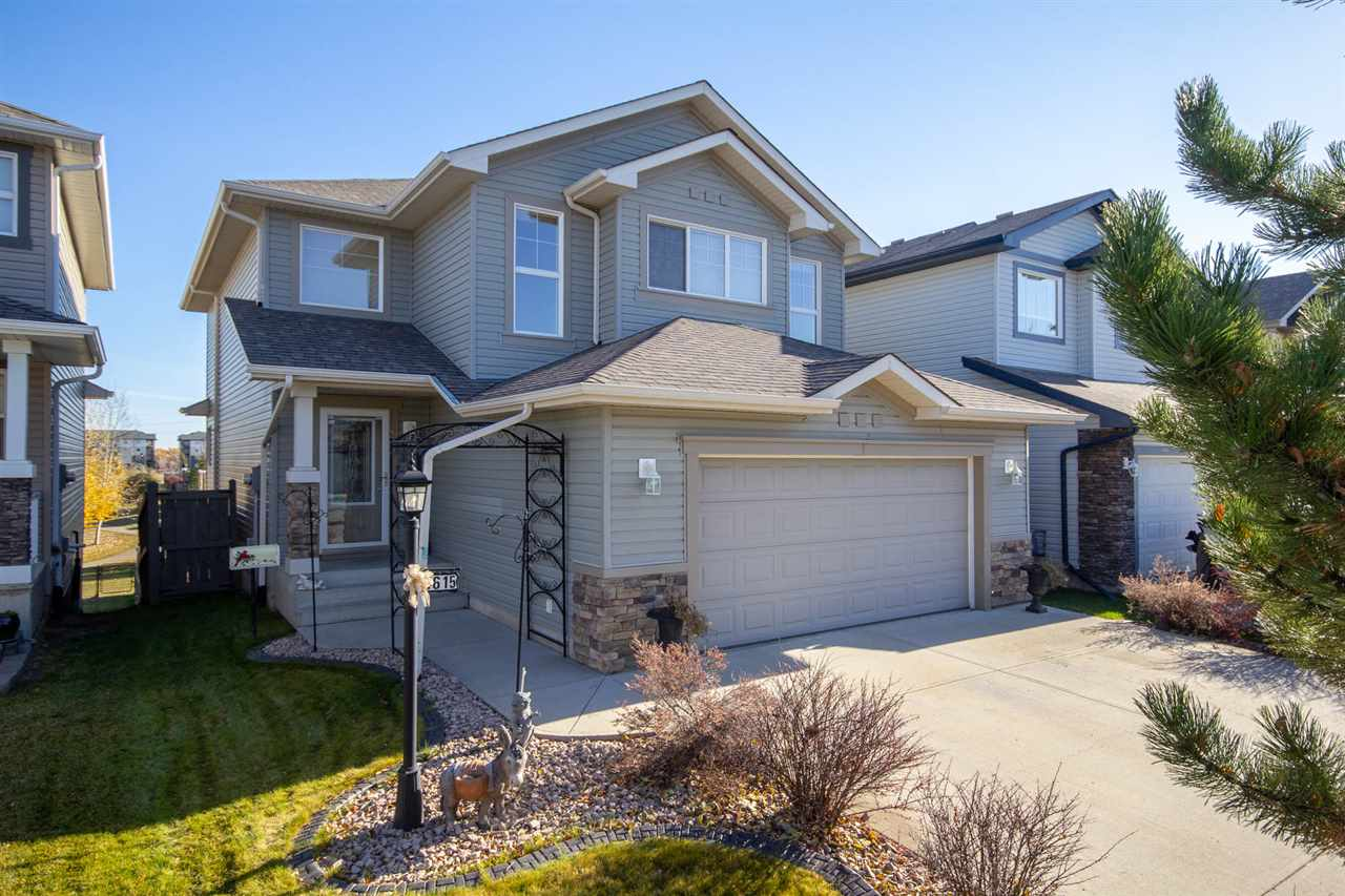 MLS® listing #E4146025 for sale located at 4615 201 Street