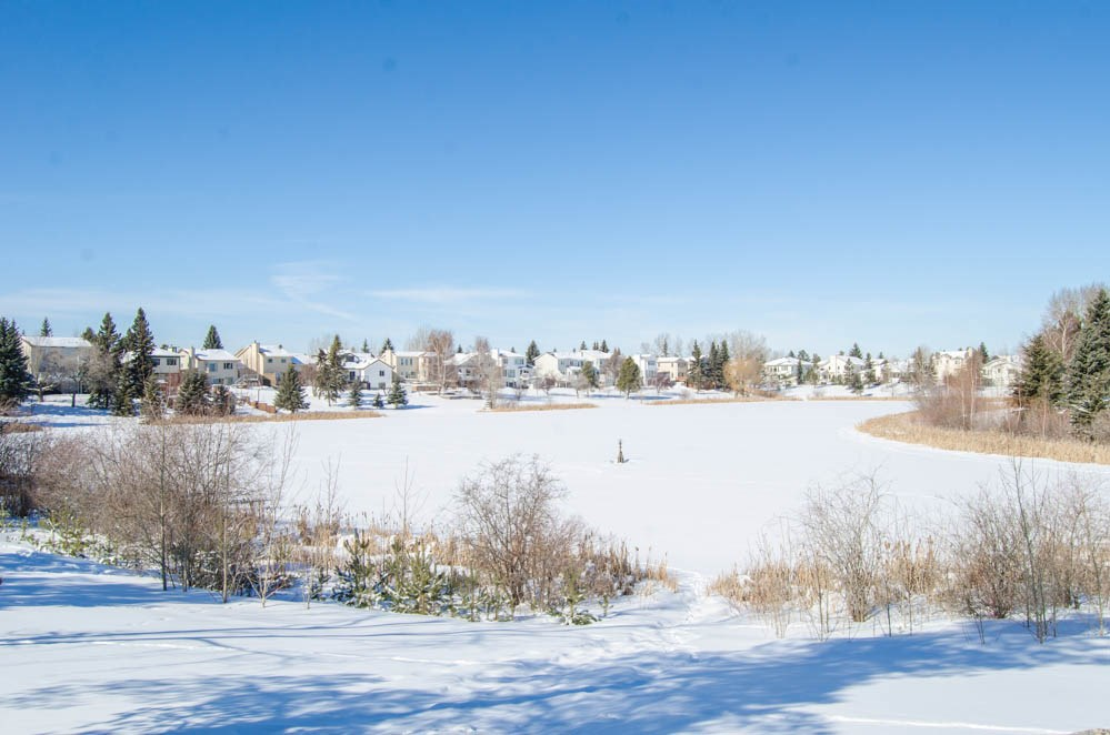 MLS® listing #E4146674 for sale located at 4422 33 Street