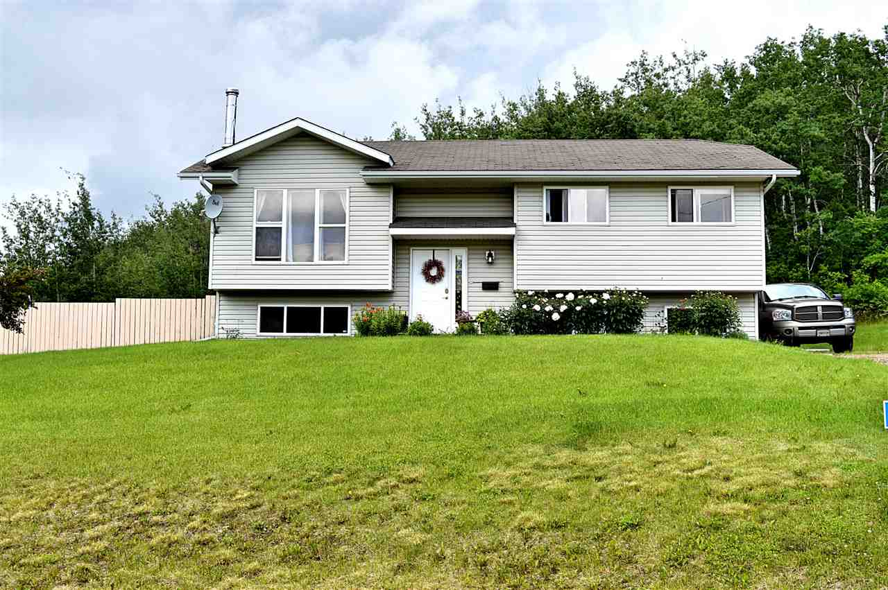MLS® listing #E4147237 for sale located at 5019 52 Avenue