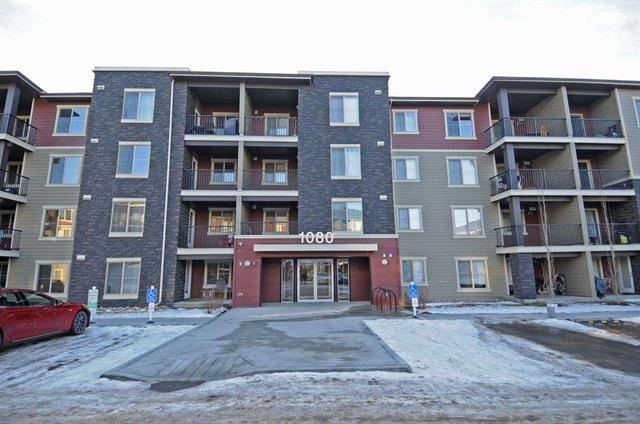 MLS® listing #E4147432 for sale located at 210 1080 MCCONACHIE Boulevard