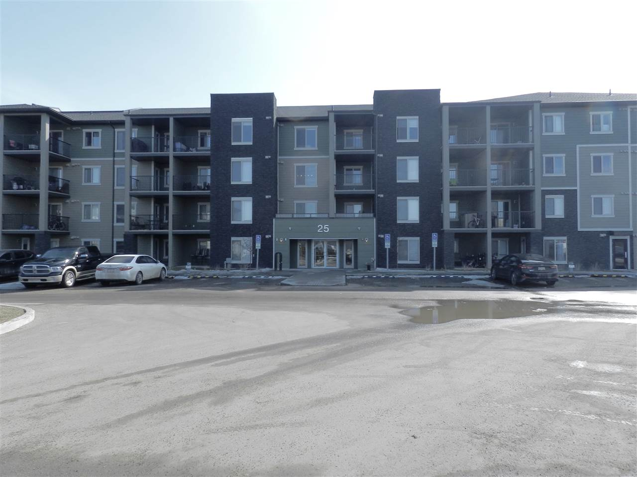 MLS® listing #E4148416 for sale located at #308 25 ELEMENT Drive N