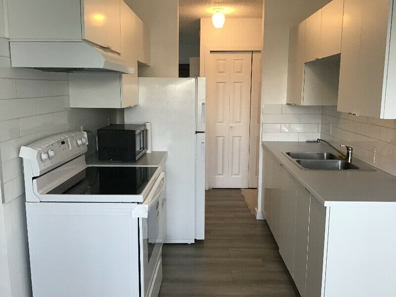 MLS® listing #E4151774 for sale located at 58 11255 31 Avenue