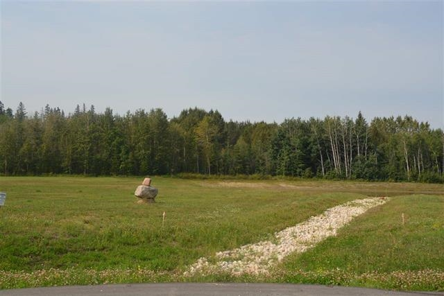 MLS® listing #E4153145 for sale located at 64 26409 TWP RD 532 A