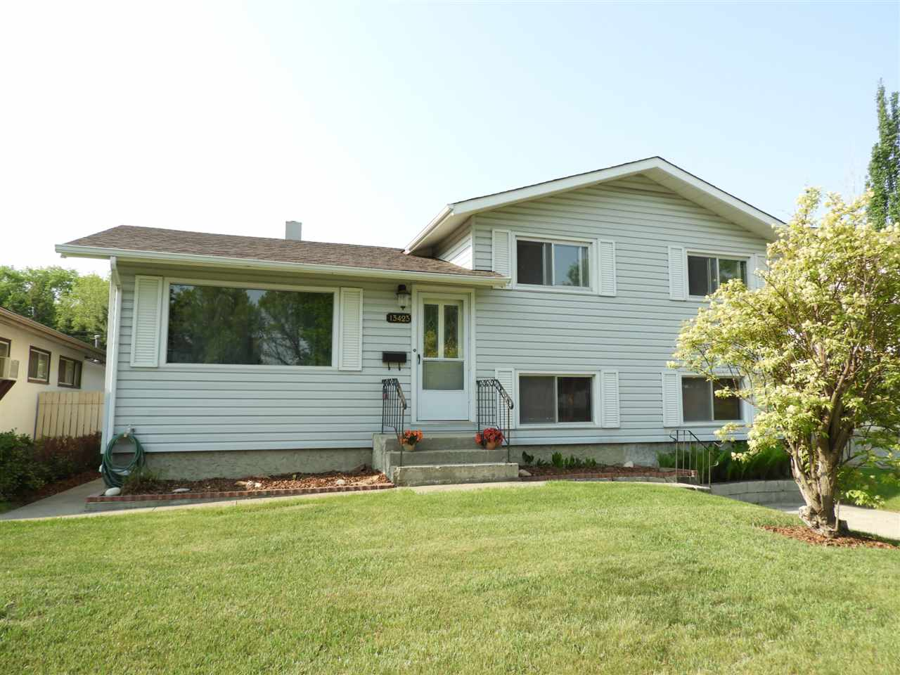 MLS® listing #E4154186 for sale located at 13423 117A Avenue