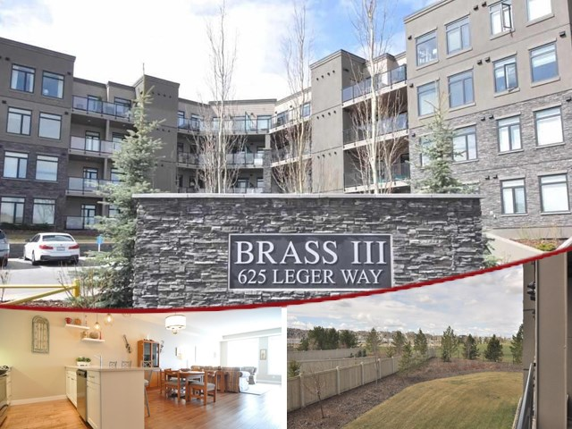 MLS® listing #E4156464 for sale located at 208 625 LEGER Way