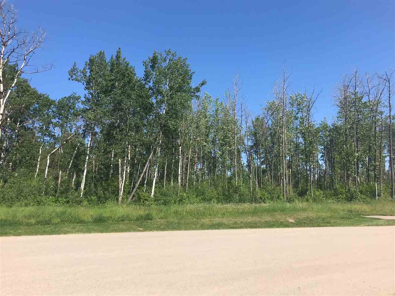 MLS® listing #E4162598 for sale located at 37 53524 RGE RD 275
