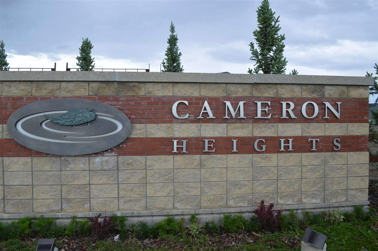 MLS® listing #E4167311 for sale located at 2003 Cameron ravine way NW