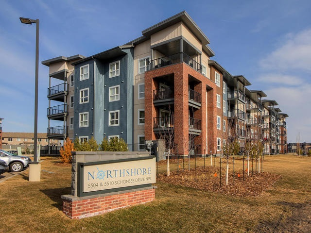 MLS® listing #E4168437 for sale located at 302 5510 SCHONSEE Drive