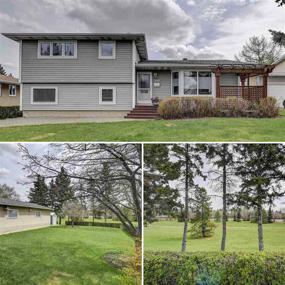 MLS® listing #E4169944 for sale located at 1919 GLENMORE Avenue