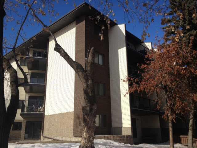MLS® listing #E4170575 for sale located at 301 12914 64 Street