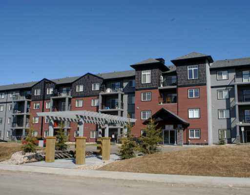 MLS® listing #E4172605 for sale located at 128 646 MCALLISTER Loop