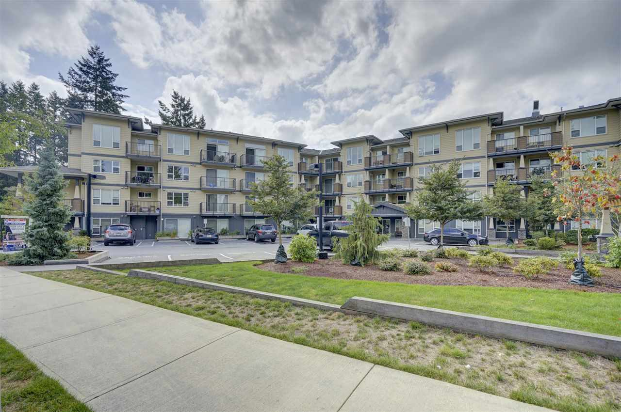 111 2565 CAMPBELL AVENUE, 1 bed, 1 bath, at $287,900
