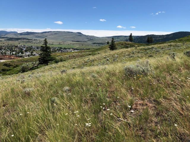 Land for Sale, MLS® # 144109