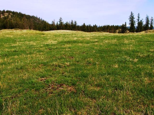 Acreage Property for Sale, MLS® # 146701
