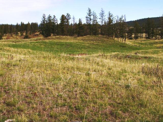 Acreage Property for Sale, MLS® # 146702