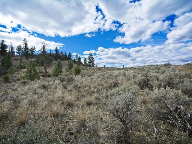 Acreage Property for Sale, MLS® # 150421