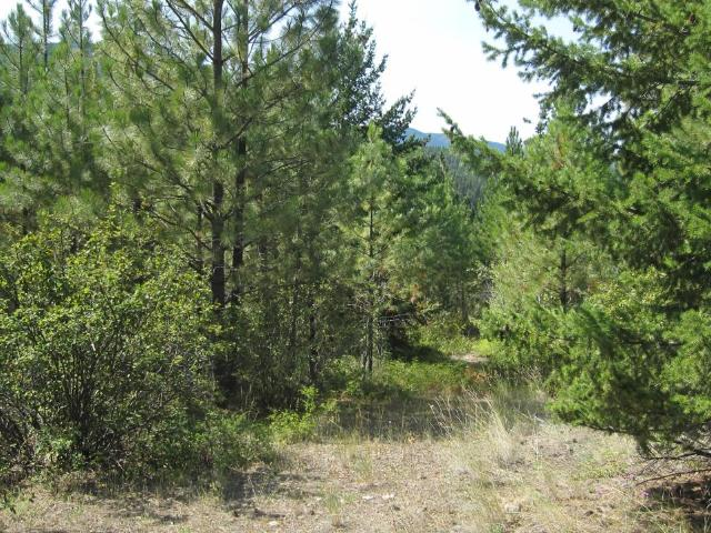 Acreage Property for Sale, MLS® # 152764