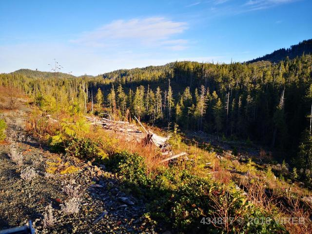 Holberg Road, Port Hardy, MLS® # 434877