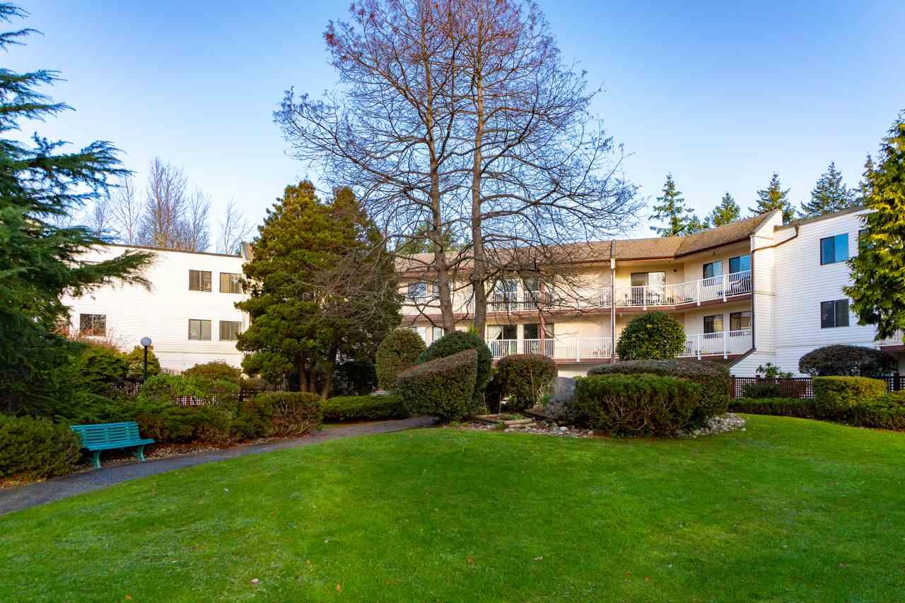 Real Estate Listing MLS R2330329